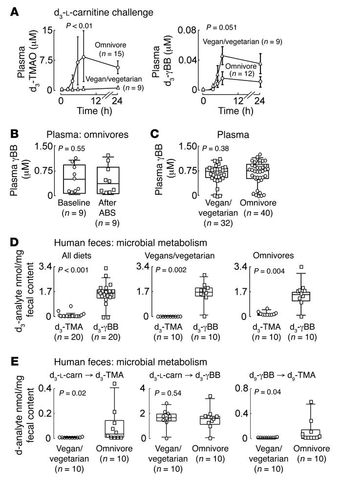 γBB is a major gut microbiota metabolite of l-carnitine, and TMA formati...