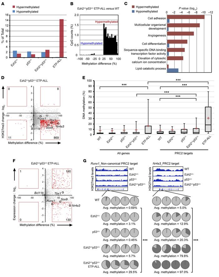 DNA hypermethylation propagated at promoters of critical genes for T cel...