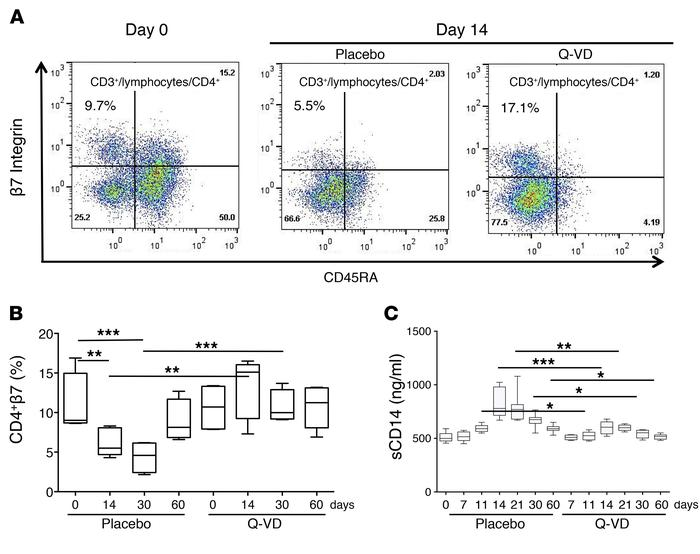 Q-VD-OPH prevents the depletion of β7hi CD4+ T cells in SIV-infected RMs...