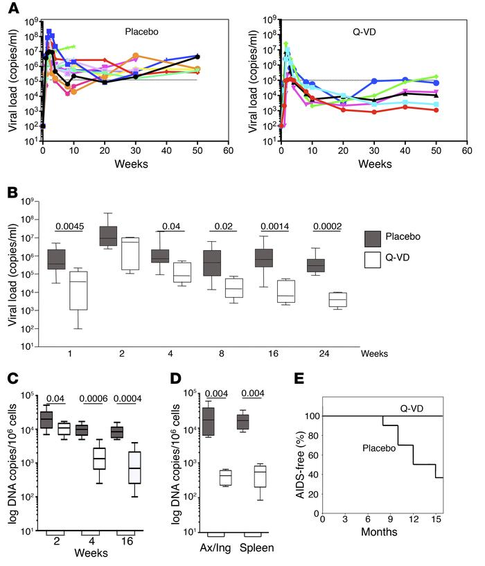Viral dynamics during primary SIV infection. (A) Kinetic analysis of vir...