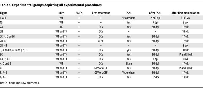 Experimental groups depicting all experimental procedures