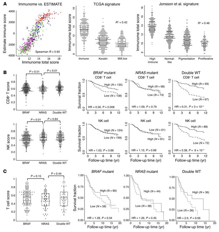 Immune score interaction with driver mutation. (A) Correlation between i...