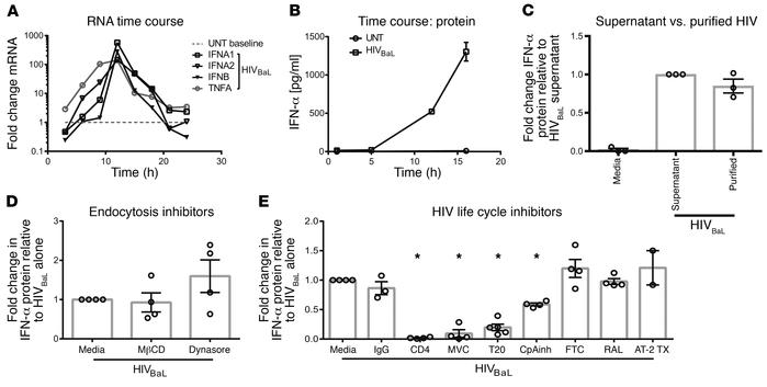 Type I IFN induction by HIV requires receptor-mediated entry, not endocy...
