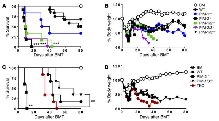 Distinct roles of PIM kinases in T cell alloresponses after BMT. WT B6 m...
