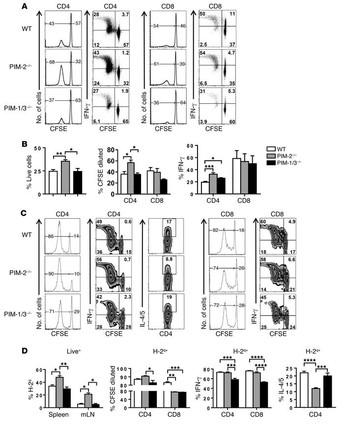 PIM-2 expression inhibits T cell proliferation and Th1 differentiation u...
