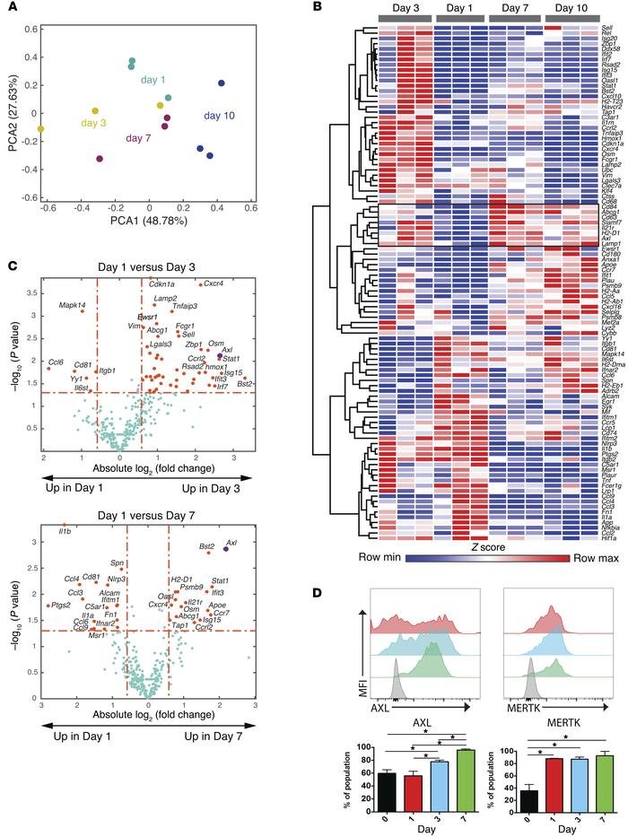 Temporal transcriptional analysis of MDMs identifies Axl and Mertk as po...