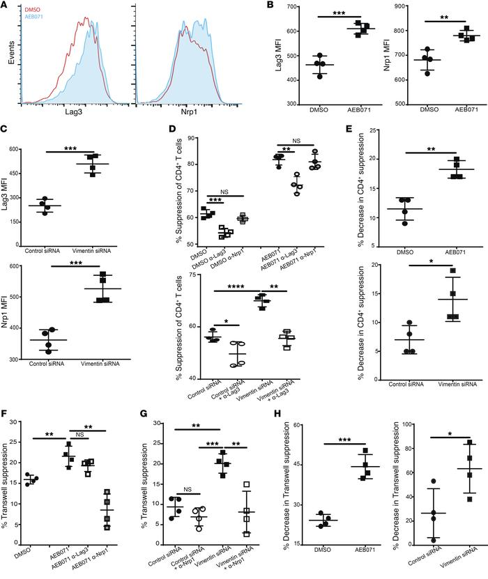 Vimentin disruption increases Nrp1 and Lag3 expression. (A–C) Analysis o...