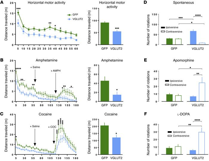 Heterologous expression of VGLUT2 in DA neurons induces Parkinsonian beh...