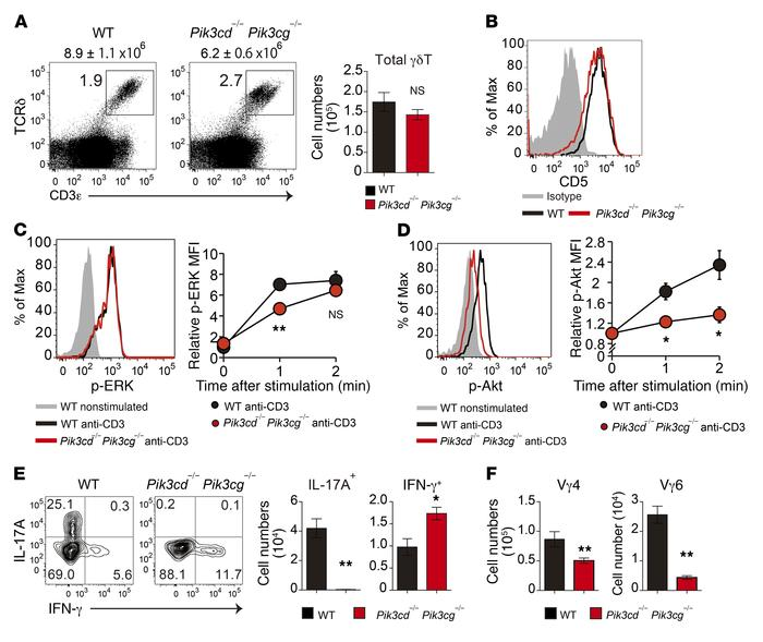 Impaired development of γδT17 cells in PI3K-deficient mice. (A) Flow cyt...