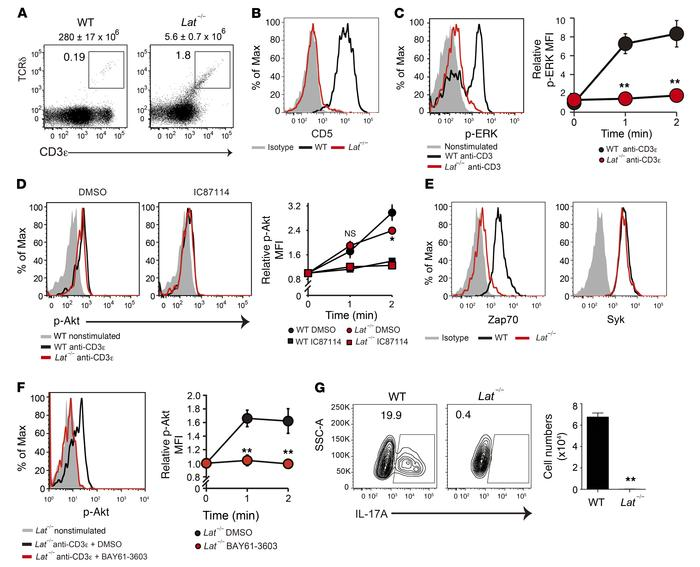 Syk mediates the Lat-independent TCR signal to the PI3K/Akt pathway. (A)...