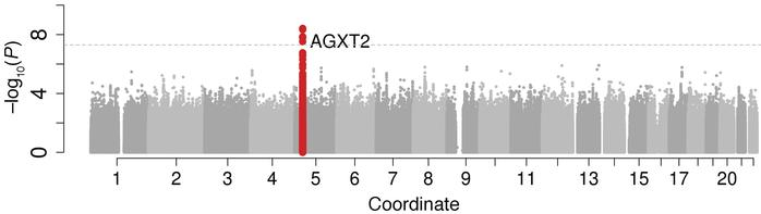 m/z 202.1185 is associated with the gene AGXT2. Manhattan plot of the G...