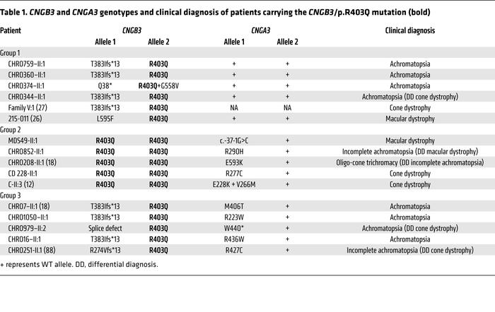 CNGB3 and CNGA3 genotypes and clinical diagnosis of patients carrying t...