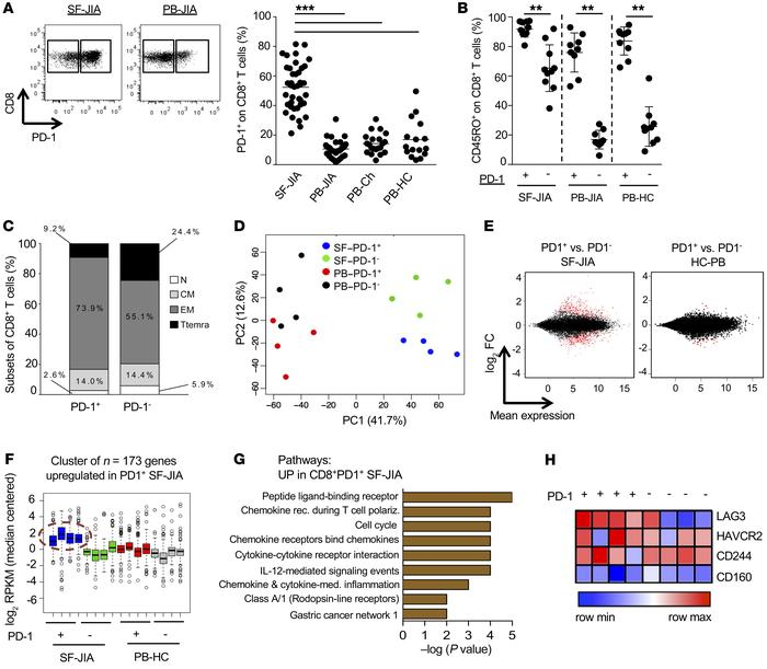 PD1-expressing CD8+ T cells are highly activated at the target site of i...