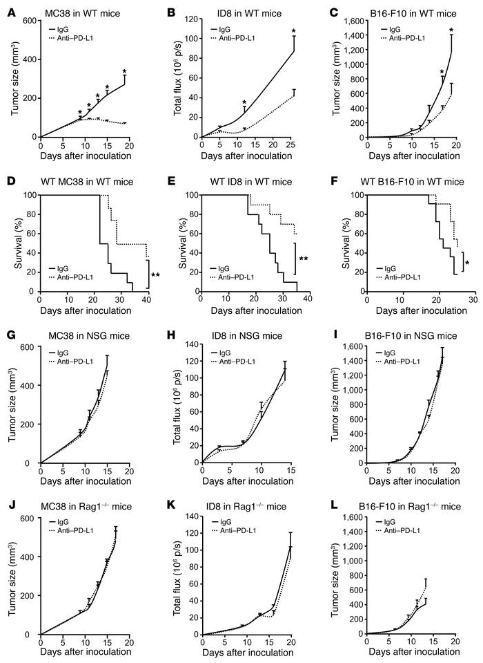 Effect of anti–PD-L1 on tumor growth in tumor-bearing mice. (A–L) WT, NS...