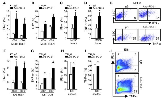 T cell effector cytokine expression induced by anti–PD-L1 therapy. (A–J)...