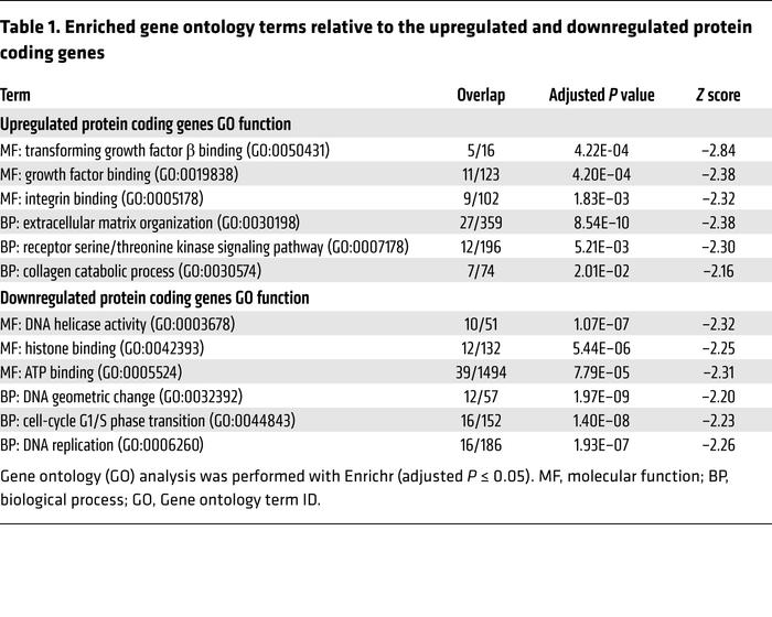 Enriched gene ontology terms relative to the upregulated and downregulat...