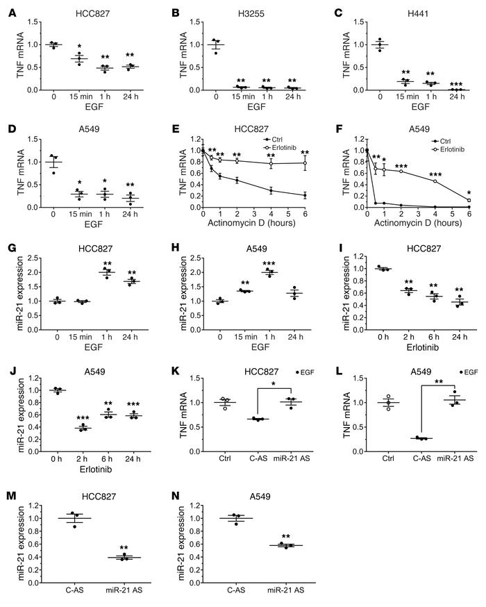 EGFR activity regulates TNF mRNA stability mediated by upregulation of m...