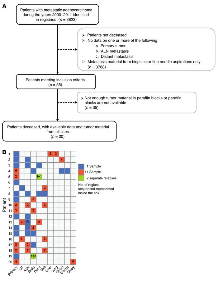 Cohort description. (A) Patient selection flow chart to study breast can...