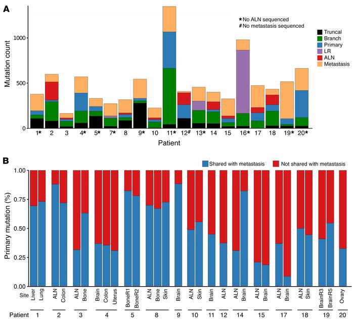 Genomic diversity among primary and metastatic tumors. (A) Summary of th...
