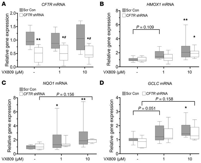 Partial knockdown of CFTR in NhBE cells decreases VX809-mediated activat...