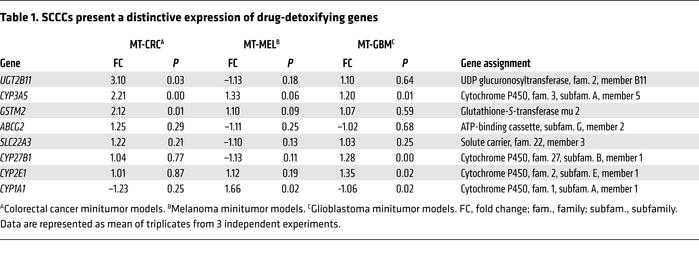 SCCCs present a distinctive expression of drug-detoxifying genes