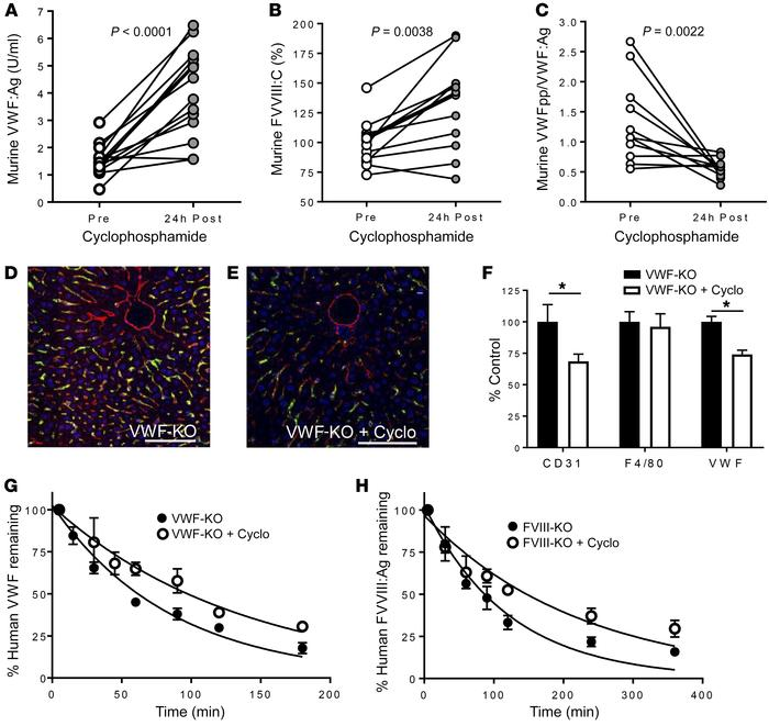 Cyclophosphamide-induced LSEC cytotoxicity increases the plasma levels a...