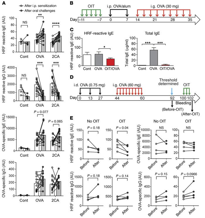 HRF-reactive IgE levels are low in desensitized mice. (A) Mice were unse...