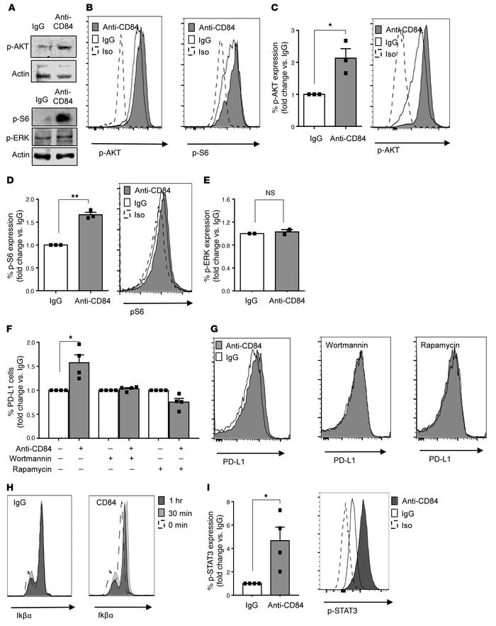 Activation of cell-surface CD84 elevates PD-L1 levels through the p-AKT/...