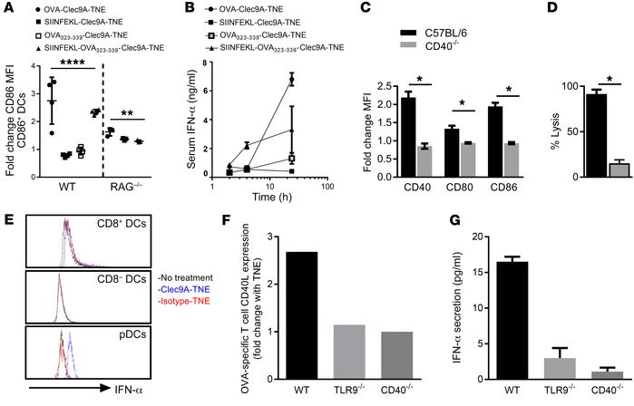 OVA-Clec9A-TNE–mediated DC activation and IFN-α production require CD4+ ...