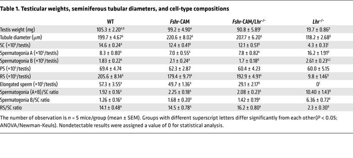Testicular weights, seminiferous tubular diameters, and cell-type compos...