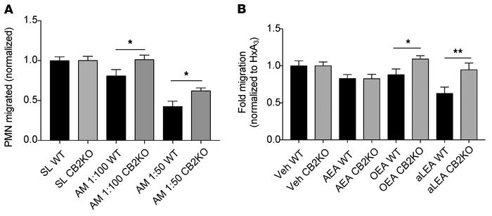 Signaling through CB2 contributes to AMEND inhibition of neutrophil migr...