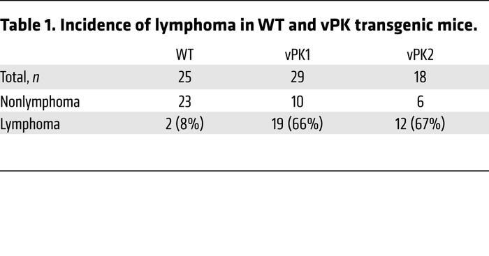 Incidence of lymphoma in WT and vPK transgenic mice.