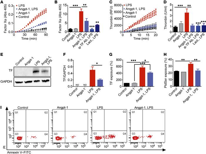 Tie2 activation suppresses prothrombotic actions of LPS on the endotheli...