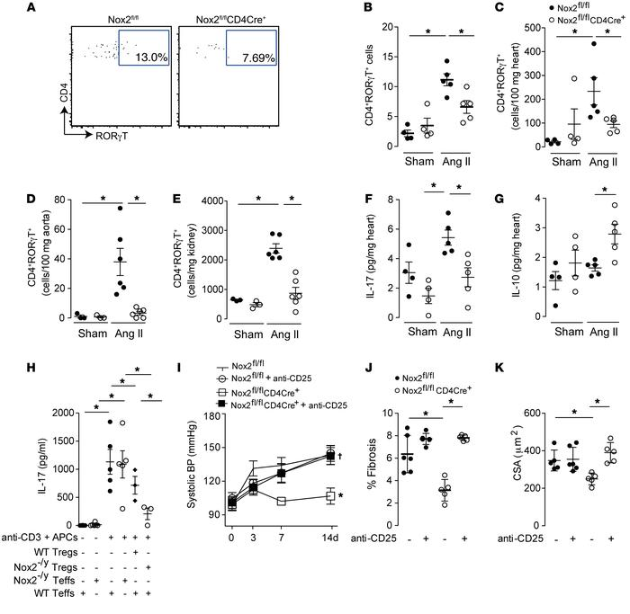 Tregs in Nox2fl/flCD4Cre+ mice account for the inhibition of Ang II–indu...