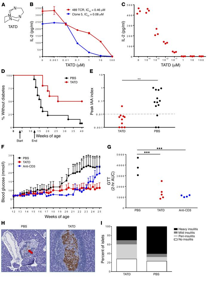 TATD blocks DQ8-restricted T cell responses and prevents diabetes in NOD...