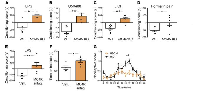 Mice lacking MC4 receptors display a preference for various aversive sti...