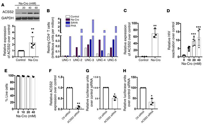 Induction of ACSS2 reactivates HIV from latency in vitro and ex vivo. (A...