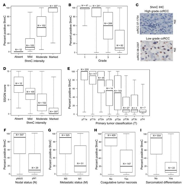 Loss of 5hmC is strongly associated with features of tumor aggressivenes...