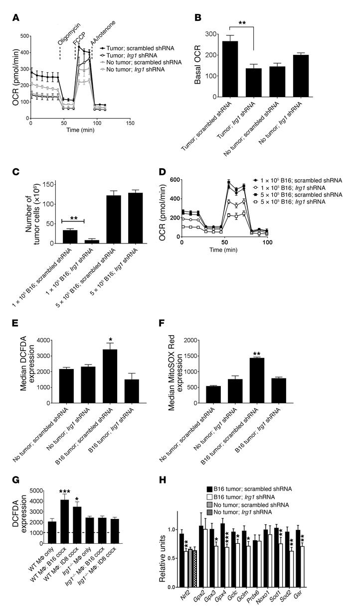 Itaconate regulates OXPHOS and mitochondrial ROS expression in pResMϕ. E...