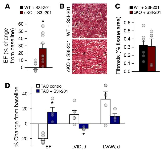 STAT3 inhibition abrogates maladaptive remodeling in cardiac-specific βI...