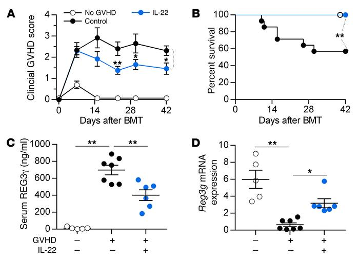 IL-22 treatment reverses GVHD. B6 mice received BM and T cells from C3H....