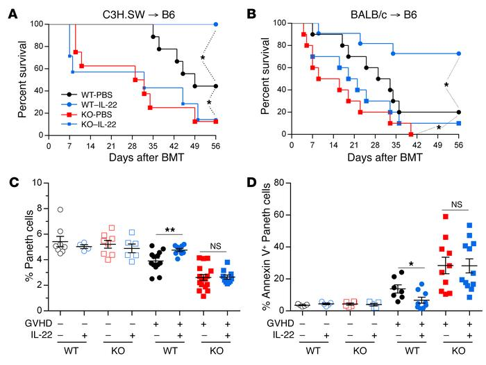 IL-22 requires REG3γ to reduce GVHD. (A) Survival of WT B6 and B6-Reg3g–...