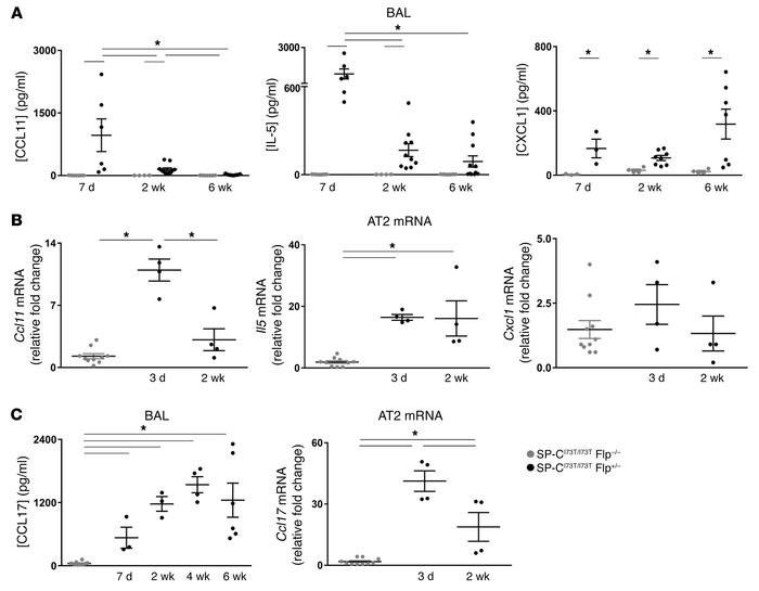 Cytokine expression profiles of IER-SP-CI73TFlp mice after tamoxifen tre...