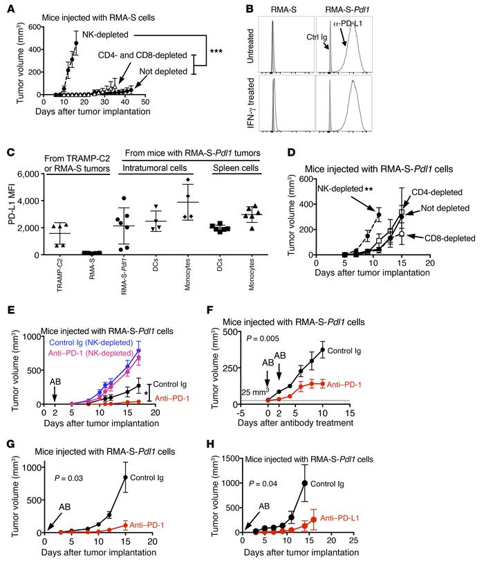 Therapeutic antitumor effect of PD-1 or PD-L1 antibodies dependent on NK...