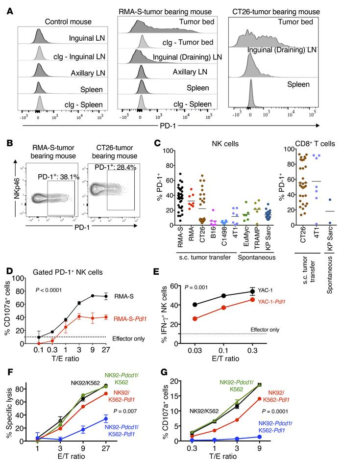 PD-1 is expressed on tumor-infiltrating NK cells and suppresses NK cell ...