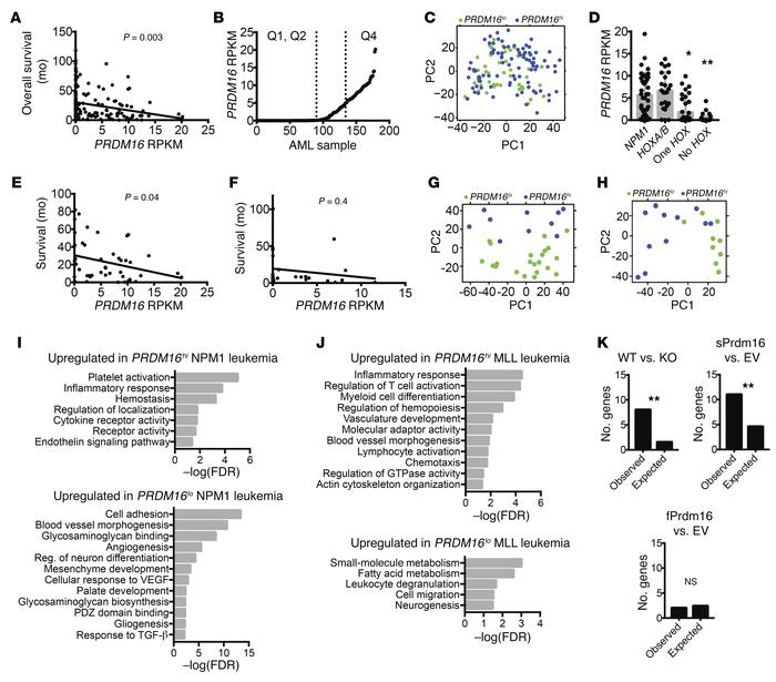 PRDM16 is associated with an inflammatory signature in a subset of huma...