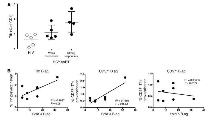 Prevaccination Tfh cell frequencies predict responses to influenza B ant...