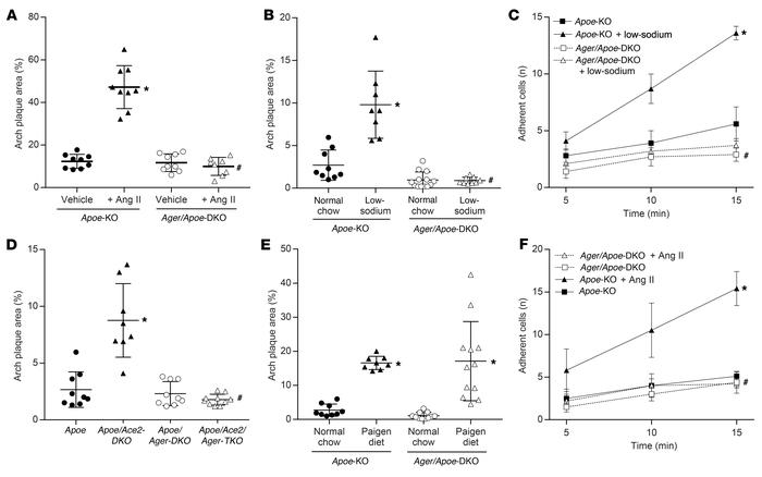 Activation of the RAAS is associated with increased atherogenesis and en...